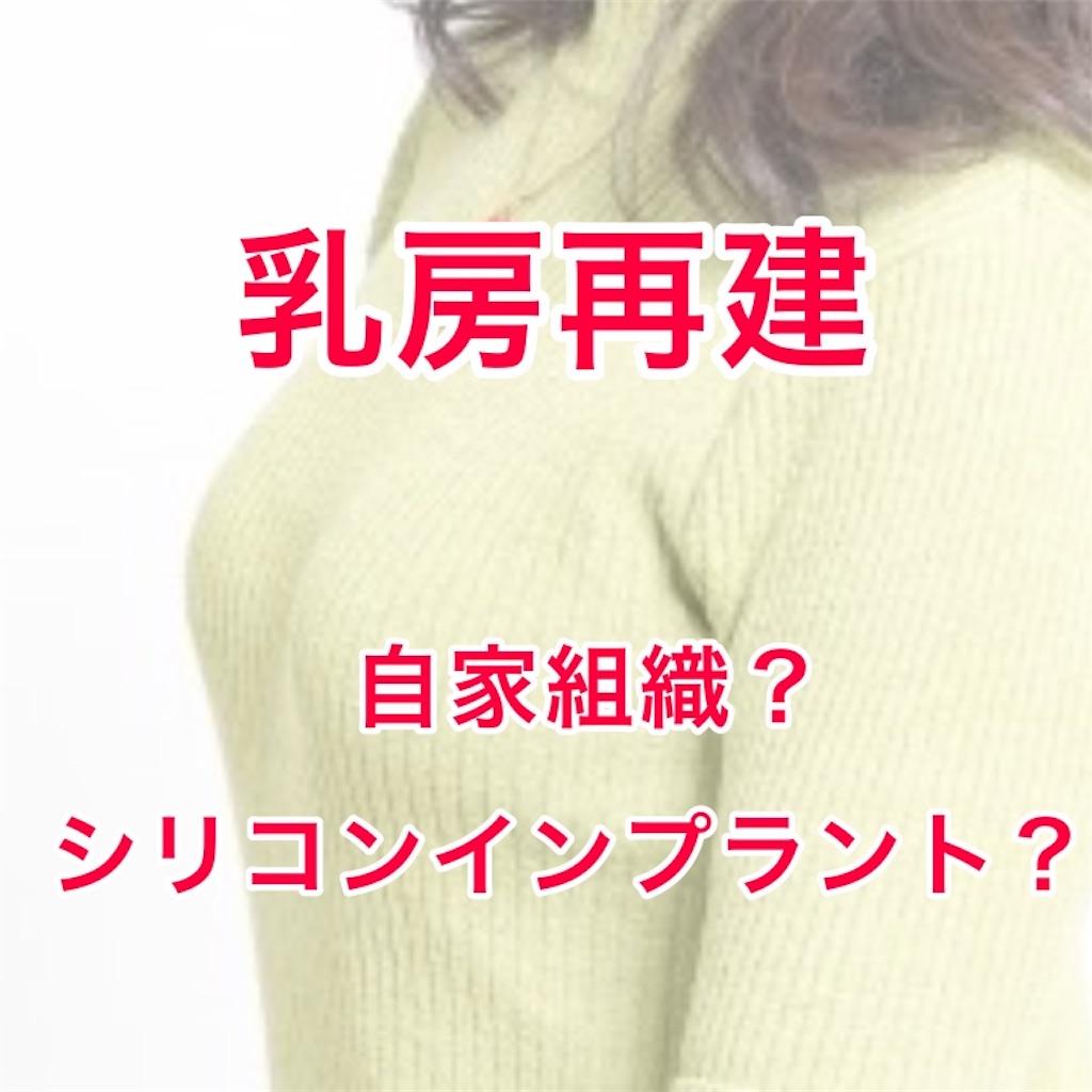 f:id:sakusaku-happy:20190704235847j:image