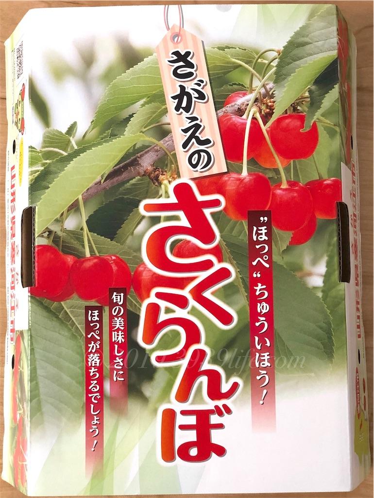 f:id:sakusaku-happy:20190831124427j:image