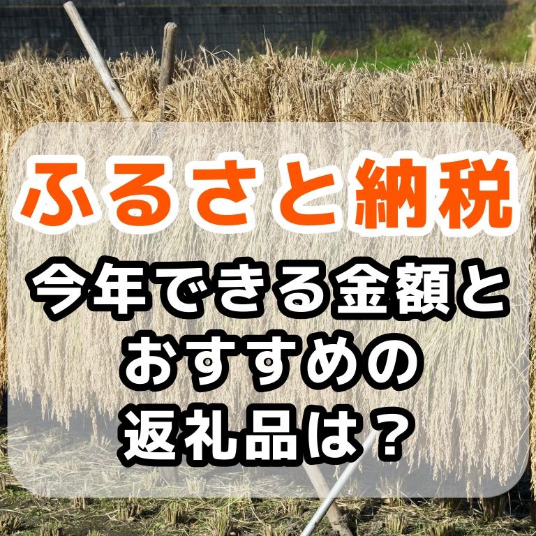 f:id:sakusaku-happy:20191011101410j:plain