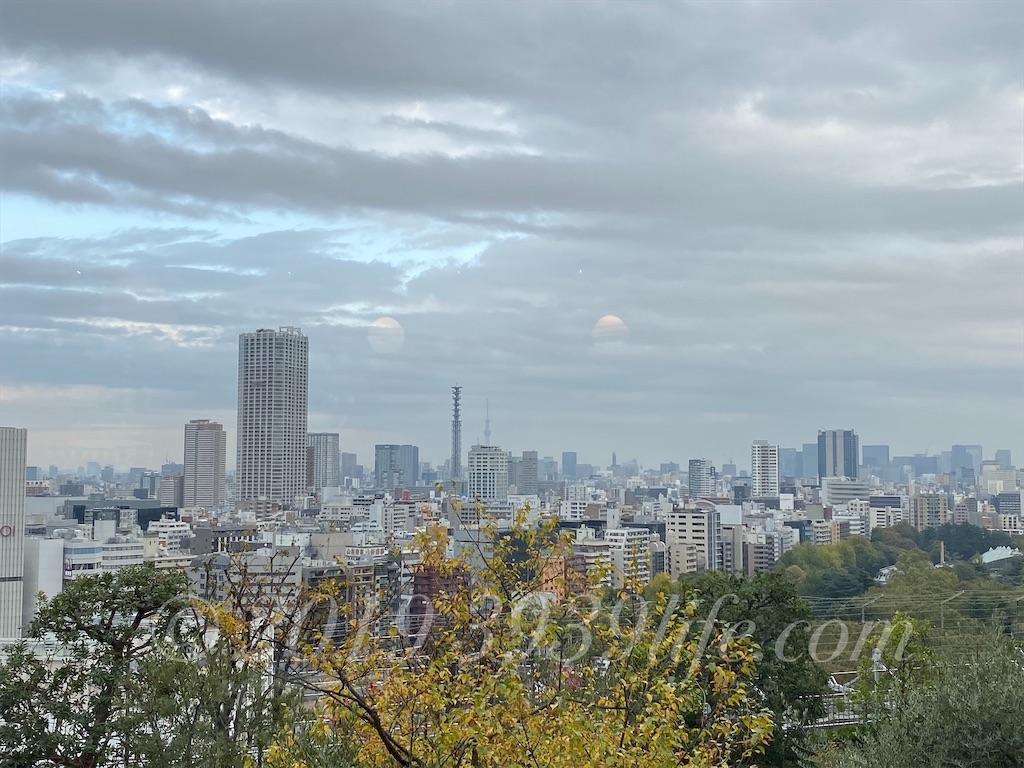 f:id:sakusaku-happy:20191116192822j:image