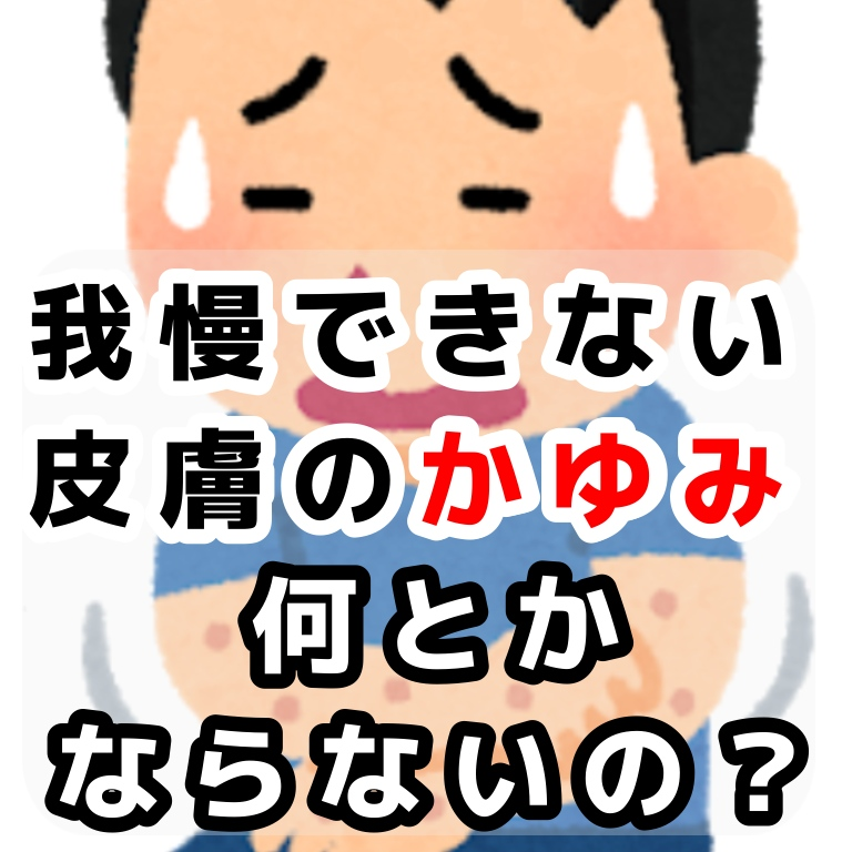 f:id:sakusaku-happy:20191129093331j:plain