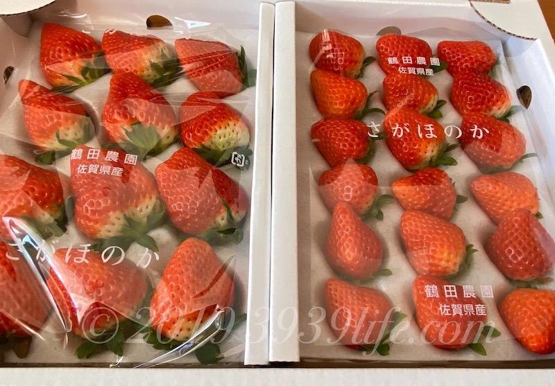 f:id:sakusaku-happy:20200130123431j:plain
