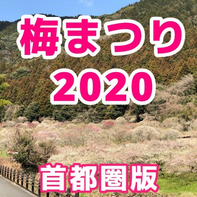 f:id:sakusaku-happy:20200203121835j:plain