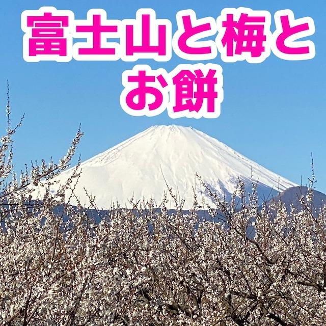 f:id:sakusaku-happy:20200210172309j:plain