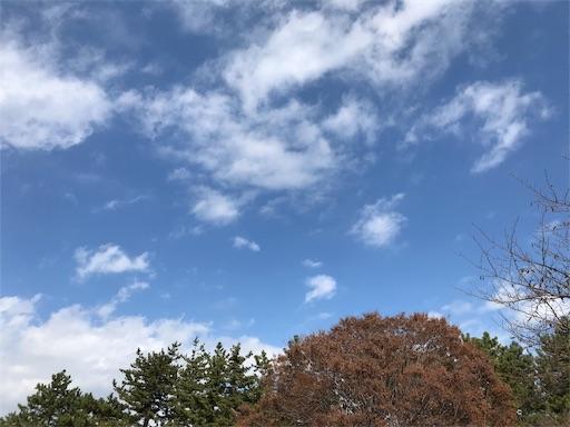 f:id:sakusaku440:20181028134606j:image