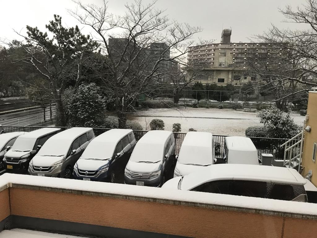 f:id:sakusaku440:20190210004358j:plain