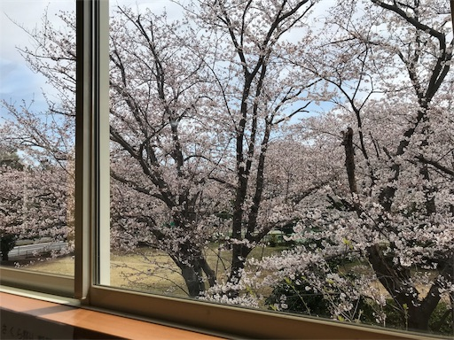 f:id:sakusaku440:20190405113220j:image