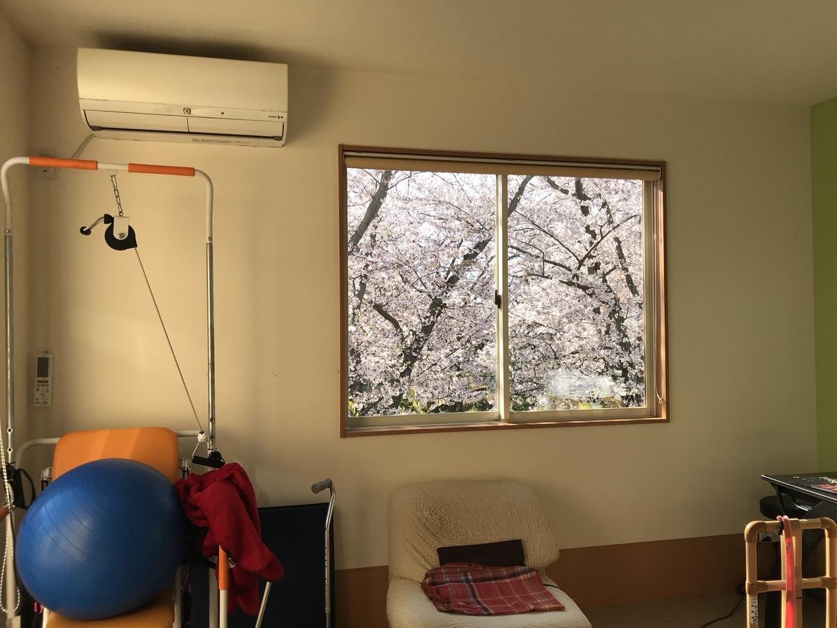 f:id:sakusaku440:20190409115545j:plain