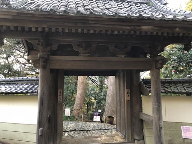 f:id:sakusakuflower0914:20181221202943j:plain