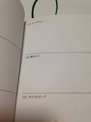 f:id:sakusakusak:20170125185412j:plain