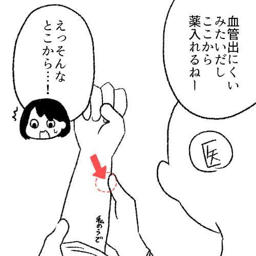 f:id:sakusakusak:20171107160533j:plain