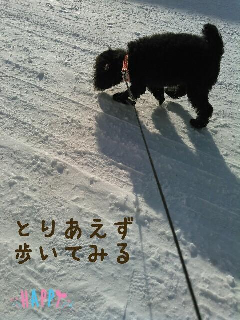 f:id:sakutakuai:20170124092903j:image