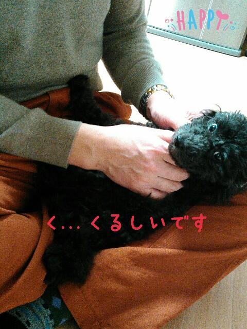 f:id:sakutakuai:20170129100716j:image