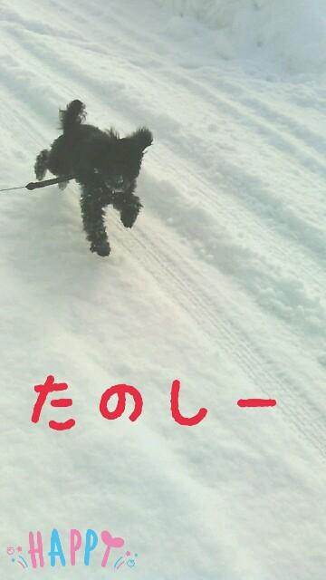 f:id:sakutakuai:20170201131858j:image