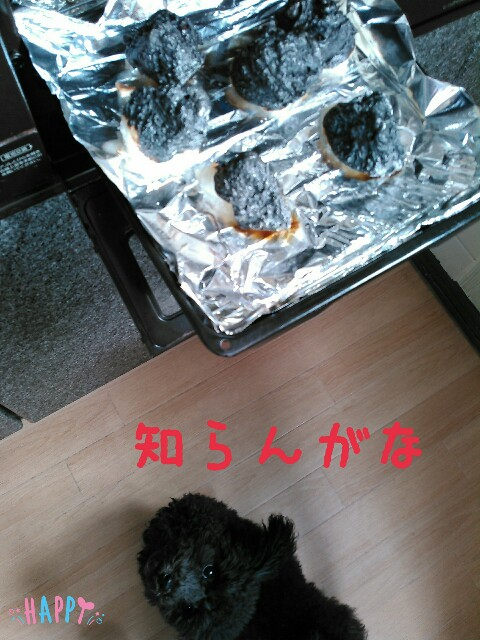 f:id:sakutakuai:20170211201307j:image