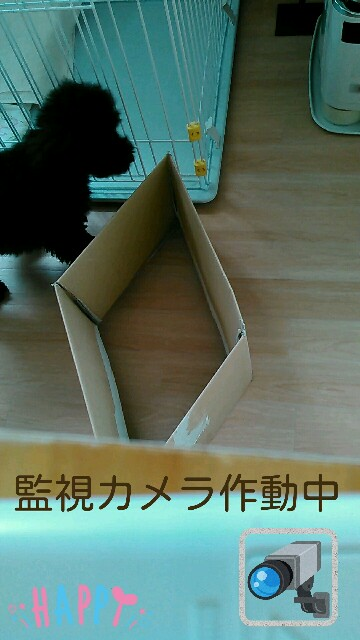 f:id:sakutakuai:20170224223613j:image
