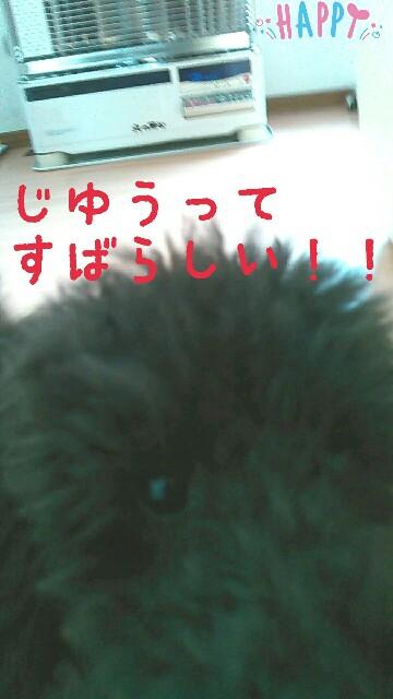 f:id:sakutakuai:20170224224050j:image