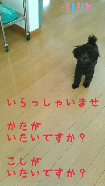 f:id:sakutakuai:20170312114526j:image