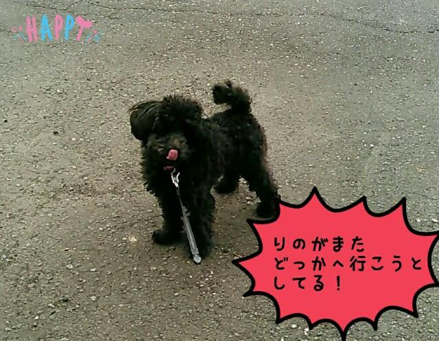 f:id:sakutakuai:20170430163329j:image