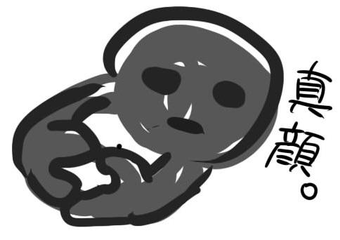 f:id:sakuya12r:20170103010116j:plain