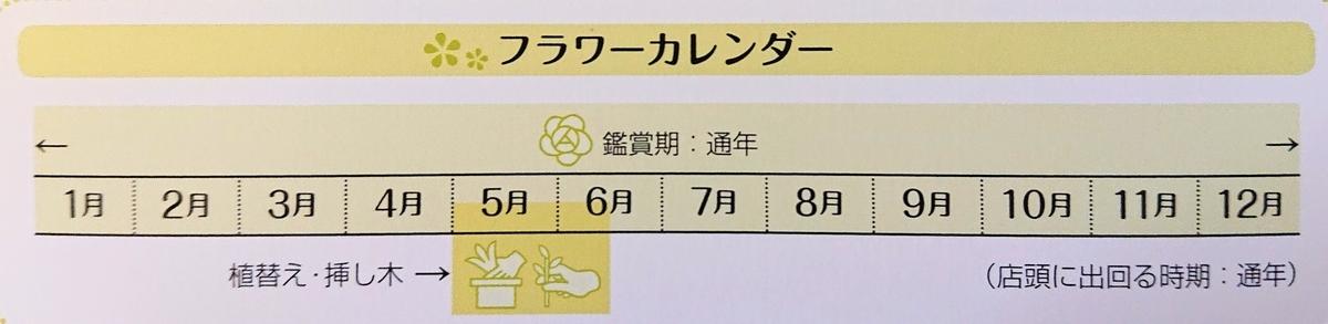 f:id:sakuyamonju:20191116115148j:plain
