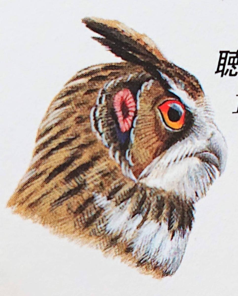 f:id:sakuyamonju:20200531170242j:plain