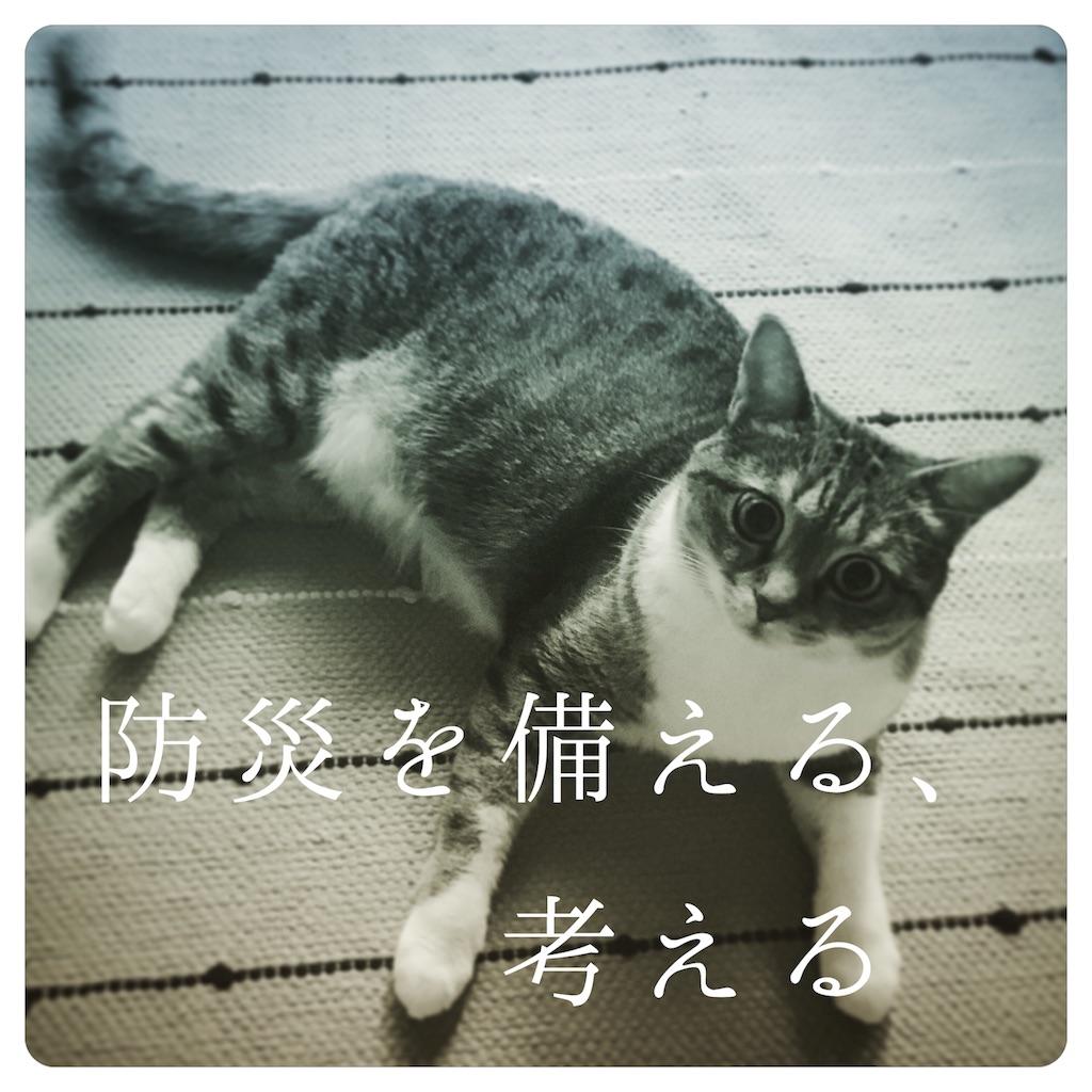 f:id:sakuyamoon:20180908104201j:image