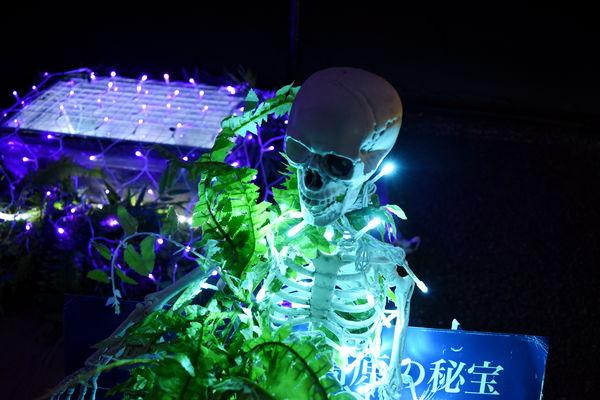 f:id:sakuyaoi:20180107005833j:plain