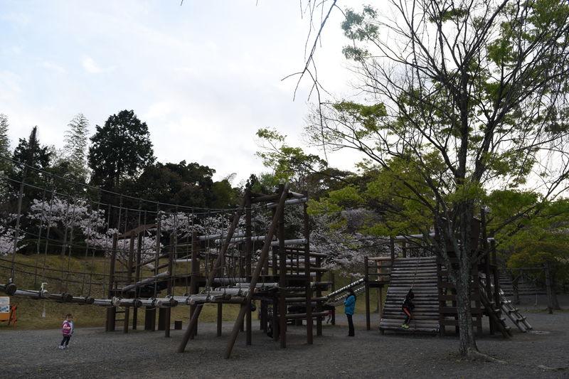 f:id:sakuyaoi:20180404192759j:plain