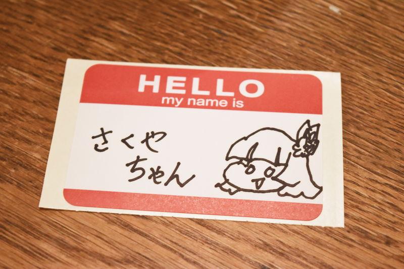 f:id:sakuyaoi:20180527025423j:plain