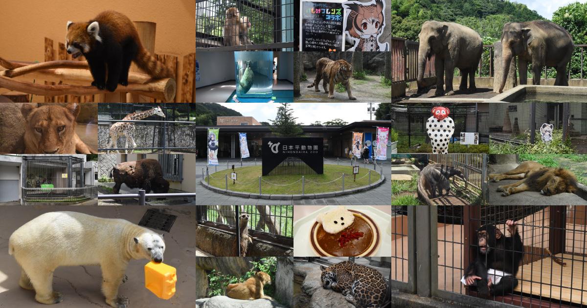 https://cdn-ak.f.st-hatena.com/images/fotolife/s/sakuyaoi/20180701/20180701100825.jpg