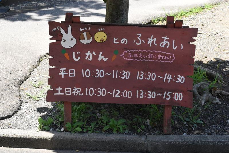 f:id:sakuyaoi:20180701114452j:plain