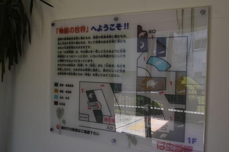 f:id:sakuyaoi:20180701155123j:plain