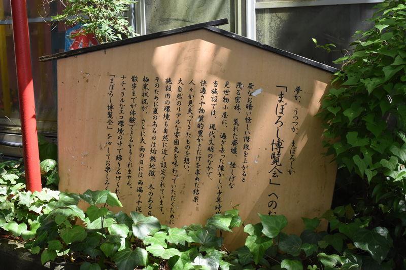 f:id:sakuyaoi:20180824205736j:plain
