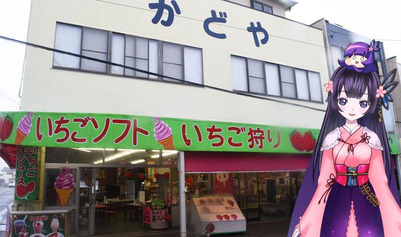 f:id:sakuyaoi:20190425010011j:plain