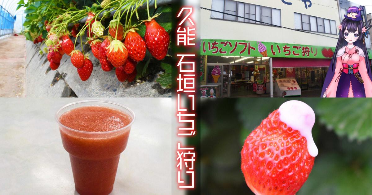 f:id:sakuyaoi:20190425010013j:plain
