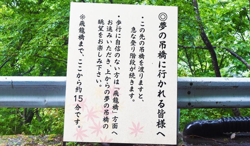 f:id:sakuyaoi:20190611032713j:plain
