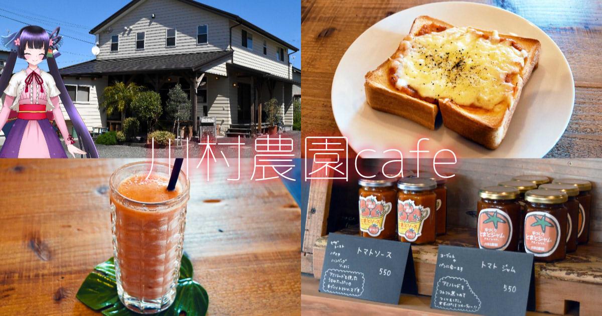 f:id:sakuyaoi:20200528001058j:plain