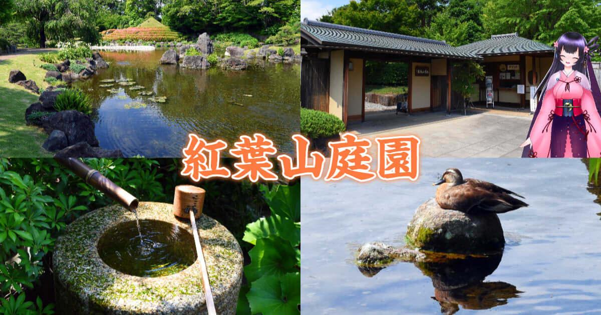 f:id:sakuyaoi:20210131034756j:plain