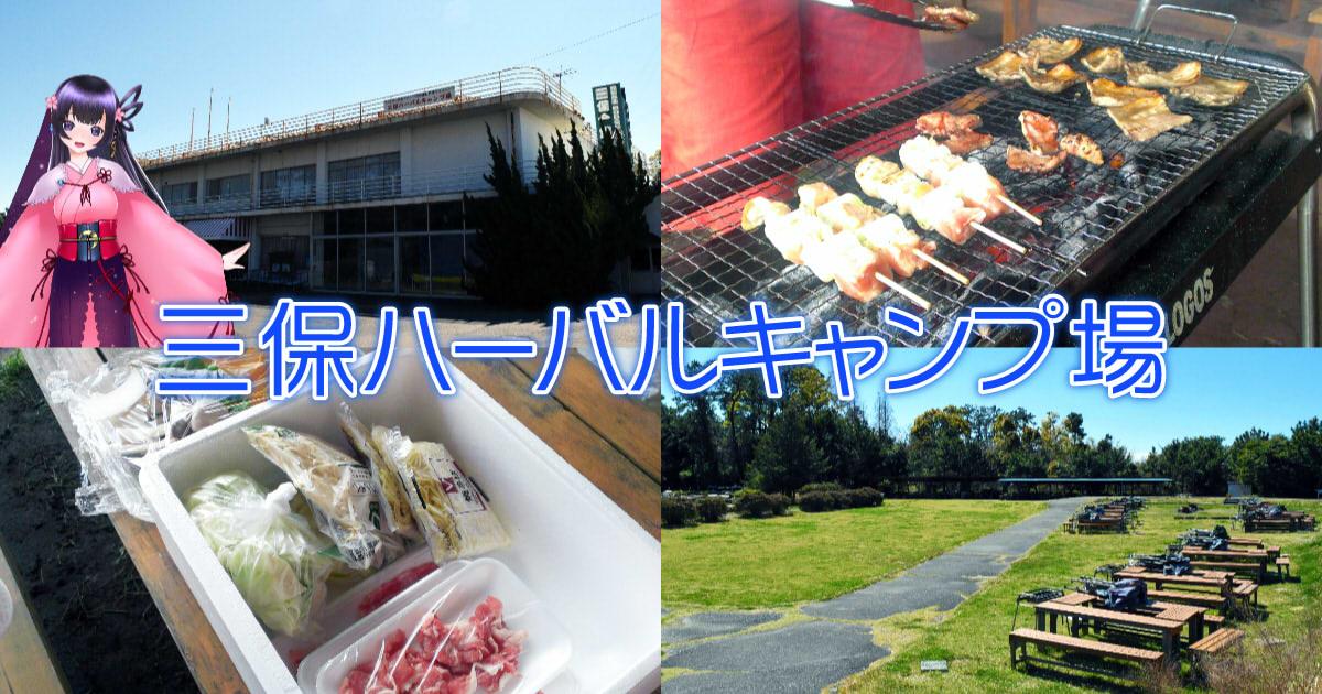 f:id:sakuyaoi:20210322101137j:plain