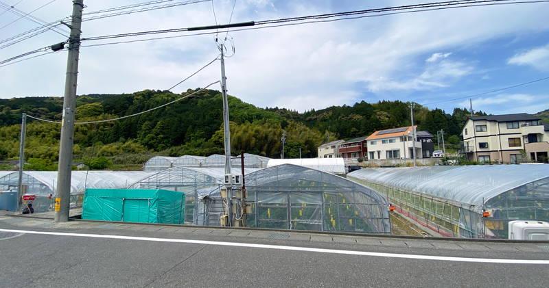 f:id:sakuyaoi:20210424194638j:plain