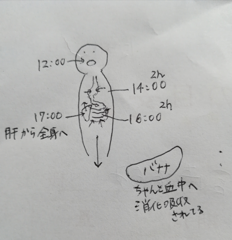 f:id:sakyuuu:20181213085509j:plain