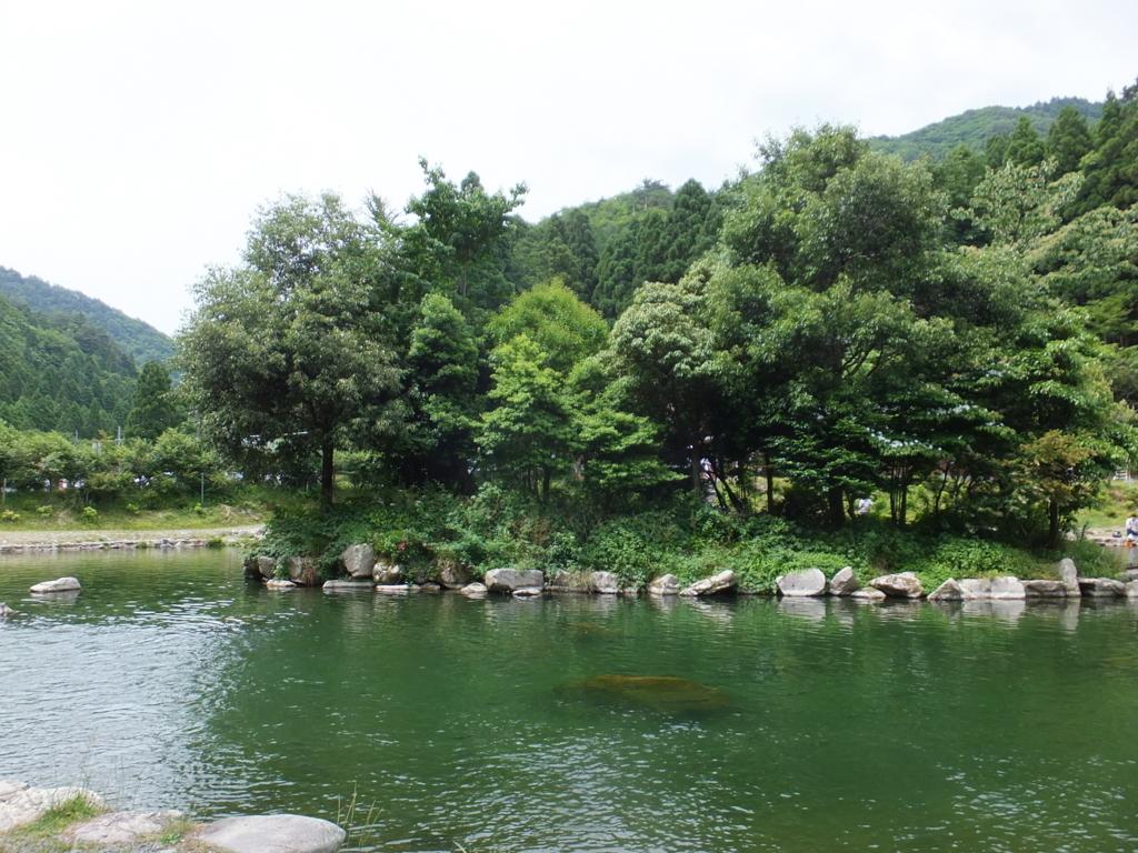f:id:salaryman-anglers:20170618232417j:plain