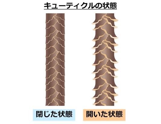 f:id:salaryman30s_koba:20190114185400j:plain