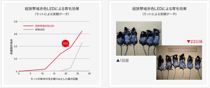 f:id:salaryman30s_koba:20190324172858p:plain