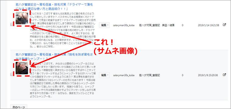f:id:salaryman30s_koba:20190331140502p:plain