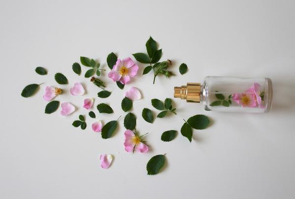 瓶と花びら