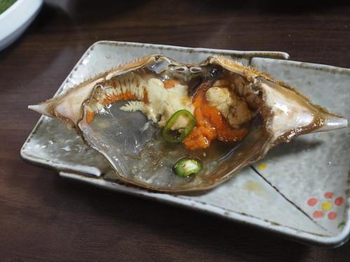 甲羅の食べ方1