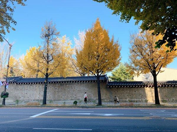 景福宮の塀