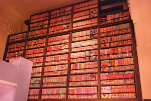 f:id:sallymylove:20091009105857j:image